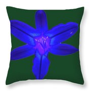 Day Lily Abstract Throw Pillow