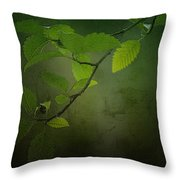 Daybreak Tiptoes In Throw Pillow