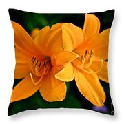Daylily Duo Throw Pillow