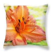Daylily Greeting Dard Blank Throw Pillow