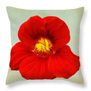 Daylily On Texture Throw Pillow