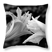 Daylily Study In Bw IIi Throw Pillow