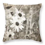Daytime Beauties Throw Pillow