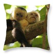 Daytime Siesta Throw Pillow