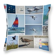 Daytona Beach Collection 2011 Throw Pillow