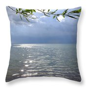 Dazzle Throw Pillow