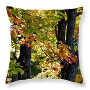Dazzling Days Of Autumn Throw Pillow