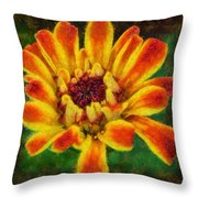 Dazzling Zinnia Throw Pillow