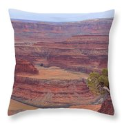 Dead Horse Point State Park Throw Pillow