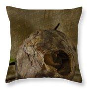 Dead Rosebud Throw Pillow