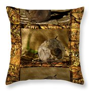 Dead Rosebud Triptych Throw Pillow