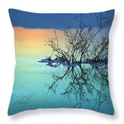 Dead Sea - Withered Bush At Dawn Throw Pillow
