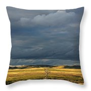 Dead Tree At Dusk With Storm Clouds Throw Pillow