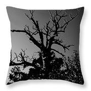 Dead Tree II Throw Pillow