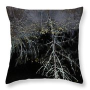 Dead Tree Reflects In Black Water Throw Pillow