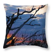 Dead Trees At Sunrise Throw Pillow