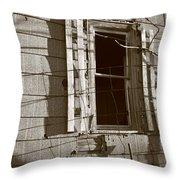 Dead Window Throw Pillow