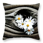 Dead Wood And Asters Throw Pillow