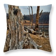 Dead Wood Throw Pillow by Paul Ward