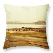Death Of Poetry Throw Pillow