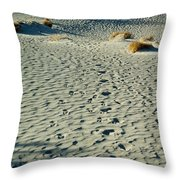 Death Valley 1 Throw Pillow