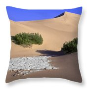 Death Valley Salt Flat Throw Pillow