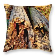 Decay Throw Pillow