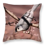 Decked Out - Tufted Titmouse Throw Pillow