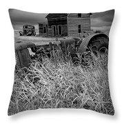 Decline Of The Small Farm No.2 Throw Pillow