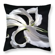 Deconstructed Lily Throw Pillow
