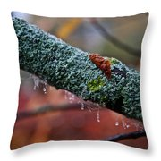 Decorated Branch Throw Pillow