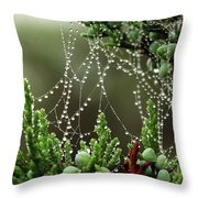 Decorated Bush Quogue Wildlife Preserve Throw Pillow