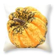 Decorative Squash Throw Pillow