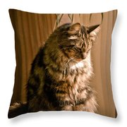 Deep In Kitty Thought Throw Pillow
