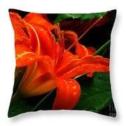 Deep Orange Day Lily Throw Pillow