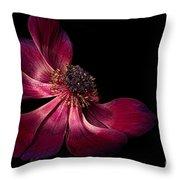 Deep Pink Anemone - 2 Throw Pillow