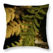 Deep Woods Fern Throw Pillow