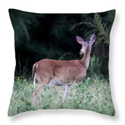 Deer - Doe - I Heard Something Throw Pillow