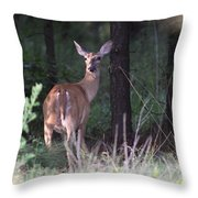 Deer - Doe - Nearing The Edge Throw Pillow