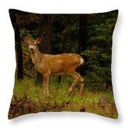Deer Gazing  Throw Pillow
