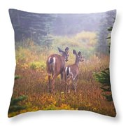 Deer In The Fog In Paradise Park In Mt Throw Pillow
