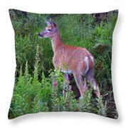 Deer In The Marsh Throw Pillow