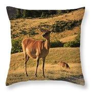 Deer On Mountain 2 Throw Pillow