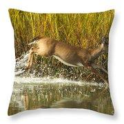 Deer Running Through The Salt Marsh Throw Pillow