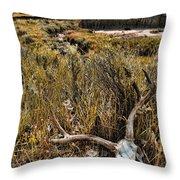 Deer Skull In Montana Badlands Throw Pillow