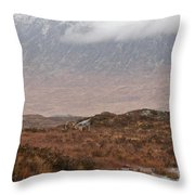 Deer Southern Highlands  Throw Pillow