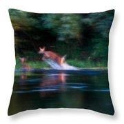Deer Splash Throw Pillow
