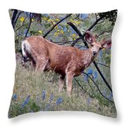 Deer Standing In Wildflowers Throw Pillow
