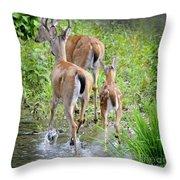 Deer Running In Stream Throw Pillow