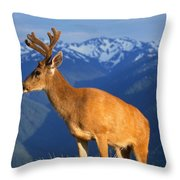 Deer With Antlers, Mountain Range In Throw Pillow